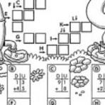 Exercícios de matemática para 2 ano para professoras e seus alunos