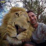 20 Animais que gostam de aparecer em selfies
