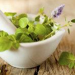 Plantas medicinais com benefícios incríveis para os músculos