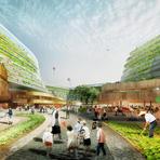 Agricultura urbana em prédio residencial para idosos