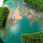 Meio ambiente - Gerando valor com a sustentabilidade