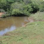 Meio ambiente - Ministério Público apura sumiço de verba na gestão de Bernal