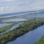Meio ambiente - Entenda o projeto sobre uso da biodiversidade aprovado na Câmara