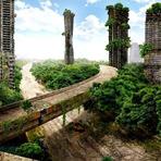 Vejam o que aconteceria com a Terra se nós humanos fossemos extintos