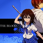 Novo volume de Strike the Blood!