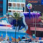 SBT Folia: confira o Carnaval de Salvador 2015, ao vivo!