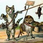 Animais - Gato e Coruja