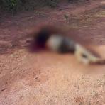 #Violência: Jovem é morto com mais de 15 facadas