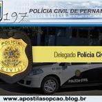 Apostila Concurso Polícia Civil   Estado de Pernambuco 2015