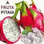 Ciência - A fruta pitaia e seus ricos benefícios