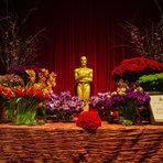 Cinema - Oscar 2015 acontece hoje