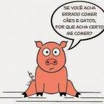 Humor - Pense um Porquinho!!!