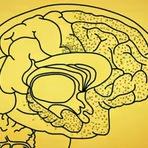 Veja o que o Alzheimer faz ao cérebro (com video)