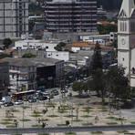 Meio ambiente - Grupo desafia prefeitura e planta 32 árvores no largo da Batata em SP