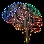 Estilo de Vida - 5 sites para exercitar e melhorar o desempenho do  seu cérebro.
