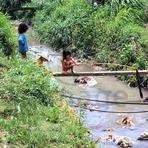 Meio ambiente - Por que a crise da água no Brasil também é suja e malcheirosa