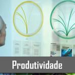 O futuro da produtividade aos olhos da Microsoft