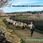 TEOLOGIA BÍBLICA E MINISTÉRIO PASTORAL
