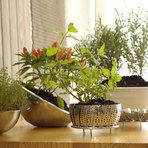 Arquitetura e decoração - Plantas para apartamentos