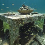 Arte & Cultura - Esculturas chamam atenção no fundo do mar