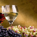 Vinho, wine, uva … entenda como beber e escolher