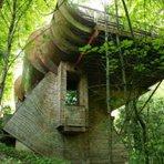Arquitetura e decoração - Design na floresta/ Arquiteto norte-americano projeta casa de verdade na árvore