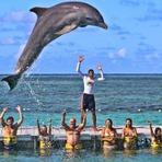 Decolar.com te leva para Punta Cana