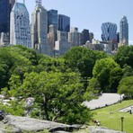 Turismo no Central Park em Nova York