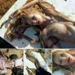 Sereia é encontrada em praia no brasil, veja fotos!
