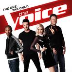 "Assista The Voice 2015 ""USA"" Aqui – Todos os Vídeos"