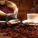 Saúde - Você sabia que a cafeína ajuda a perder as gordurinhas?
