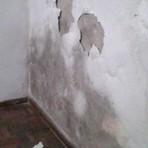 Tutoriais - Truques caseiros para remover a umidade dentro de casa