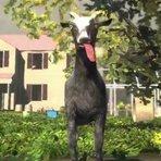 Portáteis - Goat Simulator / Simulador de Cabra