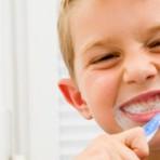 Como cuidar da escova de dentes