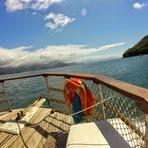 Passeio de Barco em Ubatuba por Belas Paisagens (Catamarã)