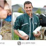 Animais - Ordenha e qualidade do leite orgânico