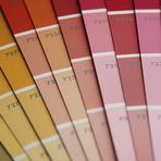 Cores - Rekor Textura e Grafiato
