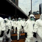 Vírus H7N9 (Nova Gripe Aviária) - Como As Pessoas São Infectadas?