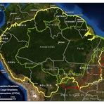 A Magia da Floresta Amazônica!