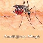 Desenhos Colorir: Mosquito da Dengue