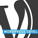 Blogosfera - O WordPress e sua evolução grandiosa