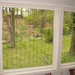 Como evitar acidentes com aves em janelas e fachadas de vidros?