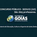 Apostila Secretaria da Educação - SEDUCE Goiás abre vagas para Professor Temporário (Segplan-GO)