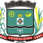 Apostila Concurso Prefeitura Municipal de Leopoldina - MG