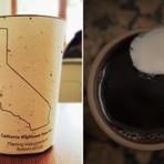 """Produtos - Empresa cria o primeiro copo de café """"plantável"""" do mundo"""