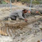 Mistérios - Fosso de Dinossauros mais de 115 milhões de anos na Chapada do Araripe, Nordeste do Brasil - Vídeo