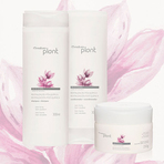Produtos - Natura Plant Conjunto Revitalização Pós Química - Shampoo + Condicionador + Máscara Intensa