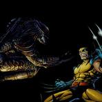 Wolverine vs Predador, quem vence? Assista ao video.