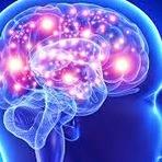 Saúde - Maioria dos casos de epilepsia pode ser controlada com medicação