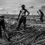 Arte & Cultura - EL PAÍS Brasil > Ainda a escravidão